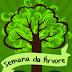 Instituto Federal de Belo Jardim vai promover a Semana da Árvore