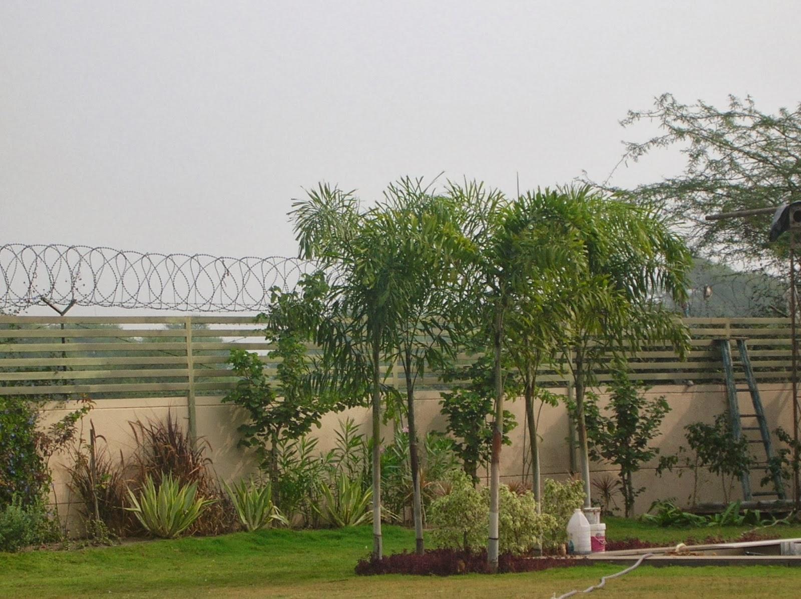 garden designer ahmedabad