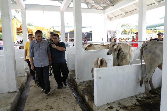 Bupati Asahan Taufan Gama Simatupang meninjau kondisi hewan di pasar hewan.