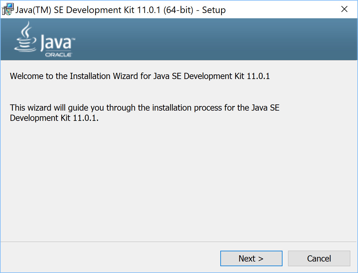 How to install Java JDK 11 on Windows 10 - Learning to ...