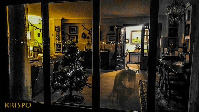 demonio dentro de casa por la noche