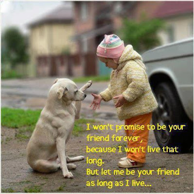 positive quotes about life: i won't promise to be your friend forever,