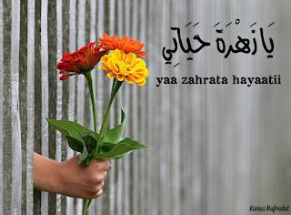yaa zahrata hayaatii