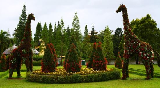 Taman Bunga Nusantara tempat wisata di cianjur