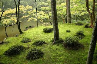 www.fertilmente.com.br - SaiHouji, um jardim de musgo Japonês