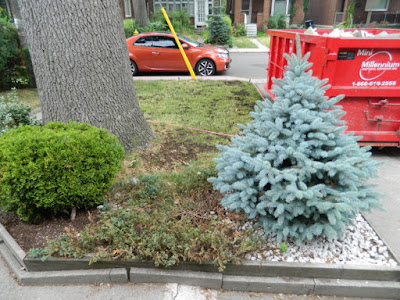 Baby Point Toronto front garden renovation before by Paul Jung Gardening Services