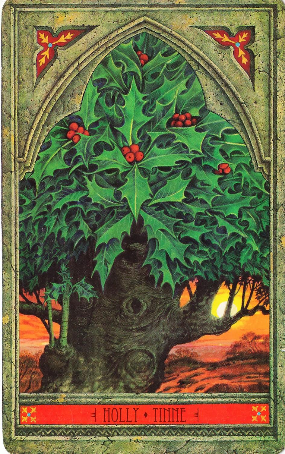 Rowan Tarot: Green Man Tree Oracle: Holly