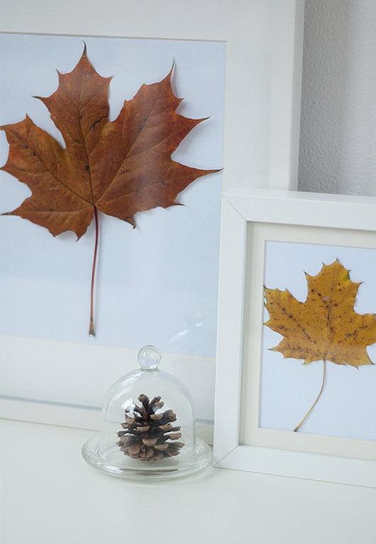 Ramas y hojas para decorar tus paredes