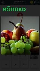 лежат разные фрукты в том числе яблоко и груши