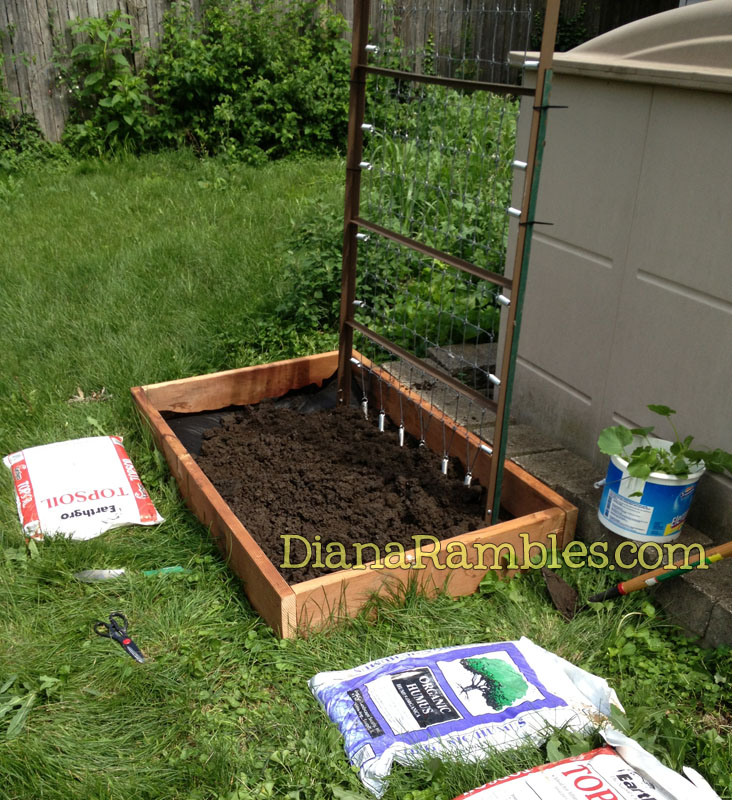 Frugal Raised Garden Bed