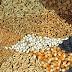 Granos | Las cotizaciones del mercado de granos del 31 / 10 / 2017