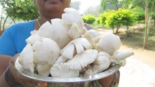 NATURE FRESH MUSHROOM GRAVY With White Rice Cooking