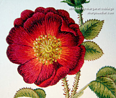 Detail of embroidery red rose. Thread painted with silk (design by Trish Burr)
