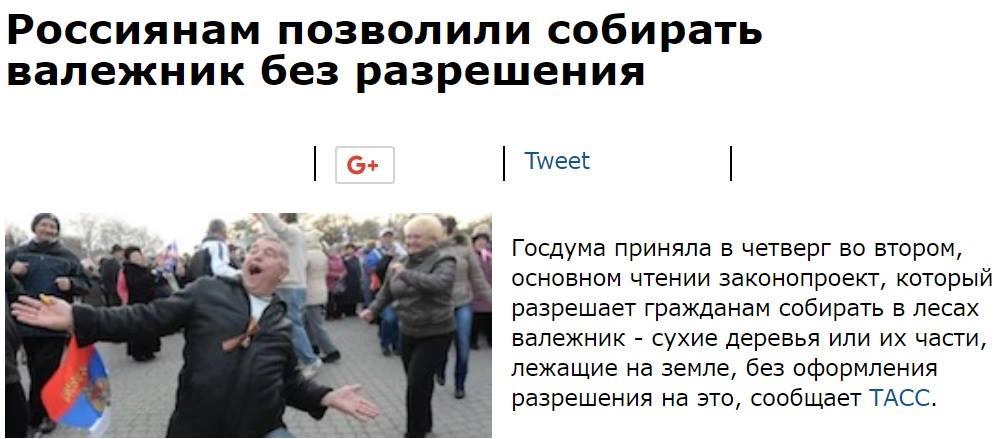 Россиянам позволили собирать валежник без разрешения