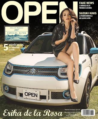 El mes pasado en Open Mexico: