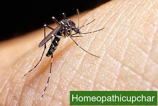 मलेरिया का लक्षण, कारण और होमियोपैथिक उपचार