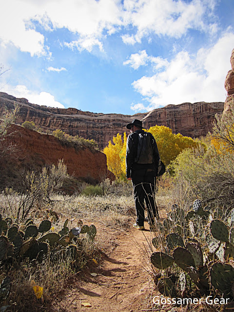 grand gulch trail