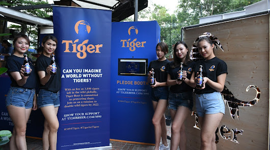 Iconic tiger disappears from Tiger Beer logo