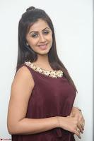 Nikki Galrani in a Brown Shining Sleeveless Gown at Nakshatram music launch ~  Exclusive 047.JPG