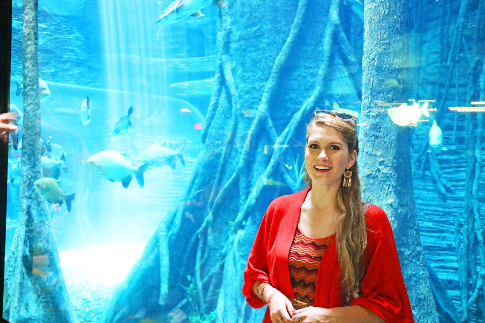 Aquarium in Medellin Colombia