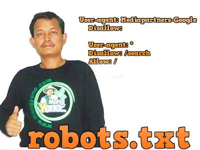 Cara Mengaktifkan Dan Setting Robots.txt di Blogger