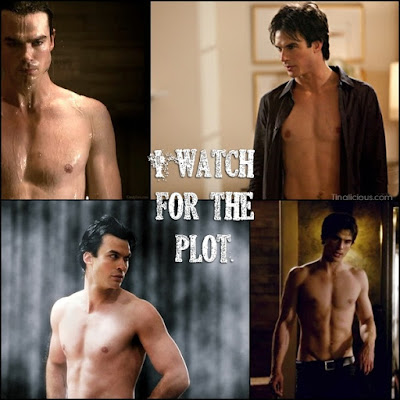 Damon TVD I Watch for the Plot