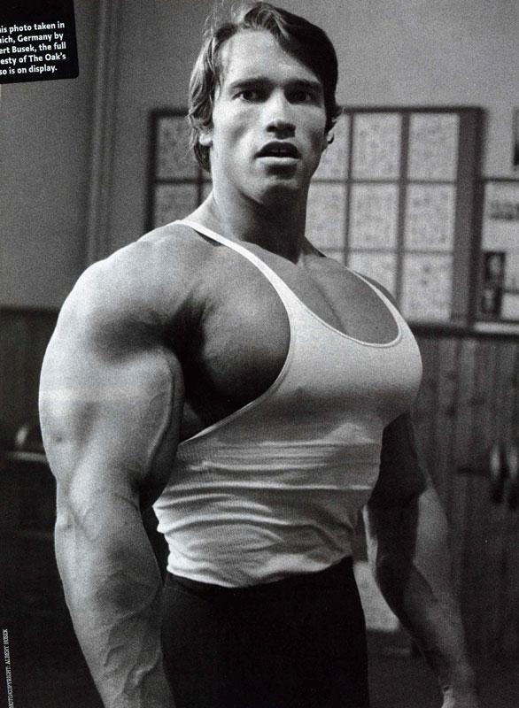 Body Builders: Arnold Schwarzenegger Pictures And Bio