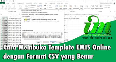 Cara Membuka Template EMIS Online dengan Format CSV yang Benar - Seperti yang kita ketahui, bahwa EMIS Online mengeluarkan fitur baru yaitu Fitur Template. Dimana nantinya perubahan atau updating data siswa semuanya dilakukan melalui template. Menurut kami ini adalah salah satu fitur yang cukup bagus dan membuat pekerjaan lebih mudah dan cepat, tetapi dalam waktu sekarang ini fitur template tersebut masih mengalami beberapa kekurangan. Seperti template yang masih belum sempurna, tutorial yang kurang details, dan juga error ketika mengupload template.