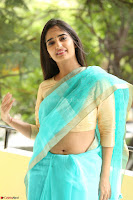 Radhika Mehrotra in Green Saree ~  Exclujsive Celebrities Galleries 005.JPG