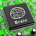 Η απειλή της Τεχνητής Νοημοσύνης (ΤΝ),το τέλος της μεσαίας τάξης