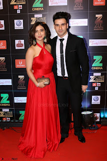 Bollywood Celebrities on the Red Carpet Of Zee Cine Awards 2017 Exclusive 061.JPG