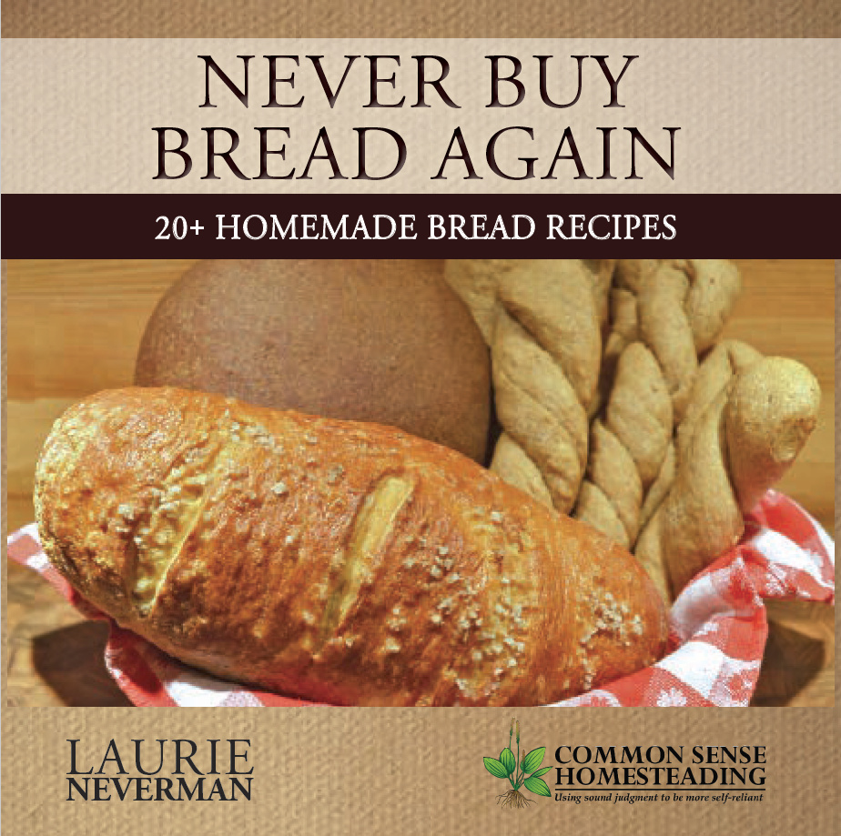 Buy Bread: Eccentric Eclectic Woman: Never Buy Bread Again