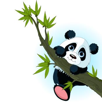 Tree Branch Panda