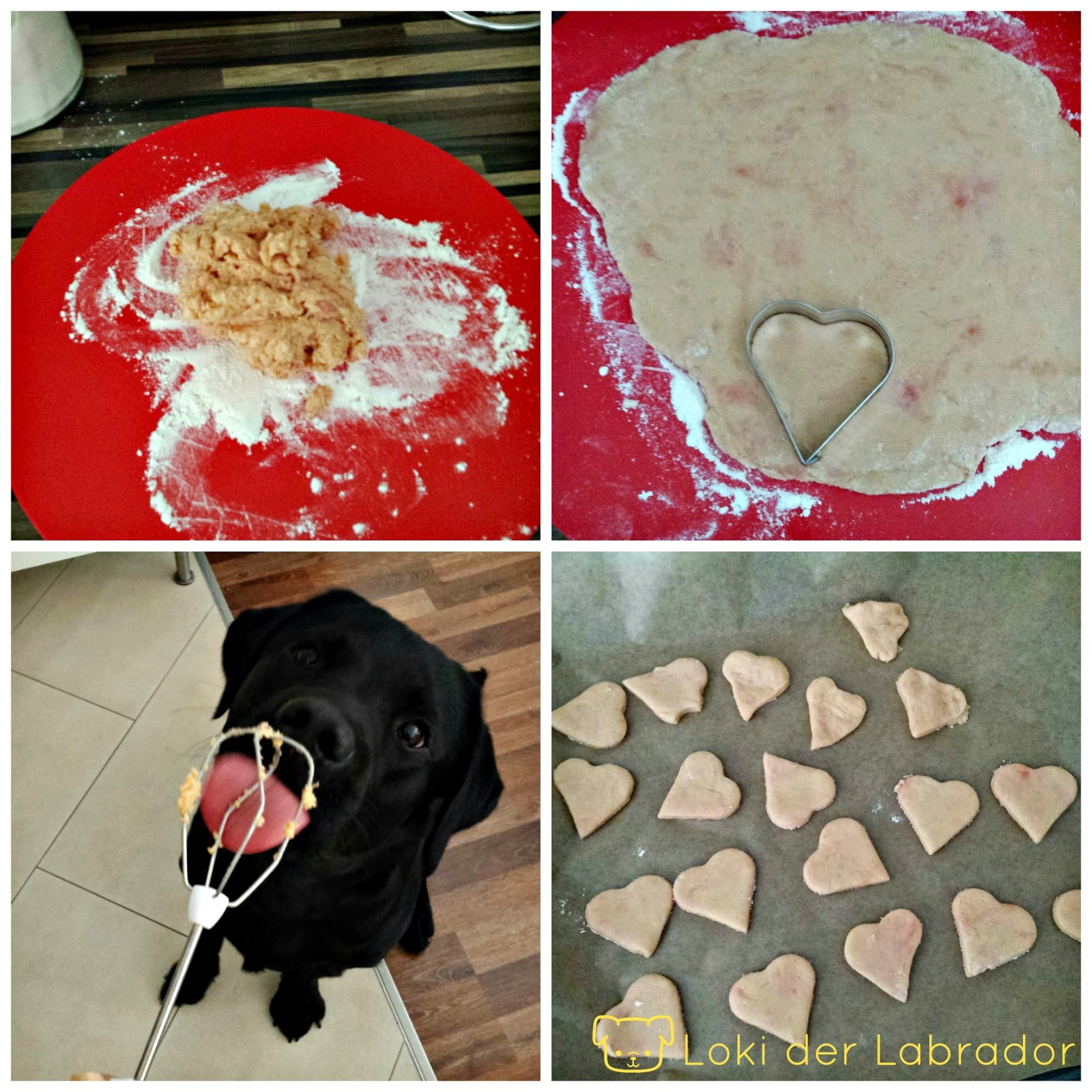 Hundekekse backen
