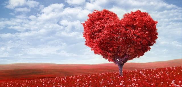 Valentine's Day Romantic Quotes