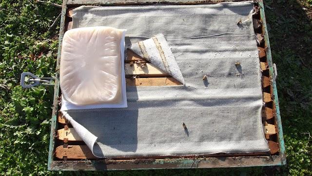 Τα ήδη χρησιμοποιημένα κηρόπανα τα πετάμε και βαζουμε καινούρια; Κάνουμε απολύμανση;