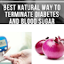 Best Natural Way To Terminate Diabetes And High Blood Sugar