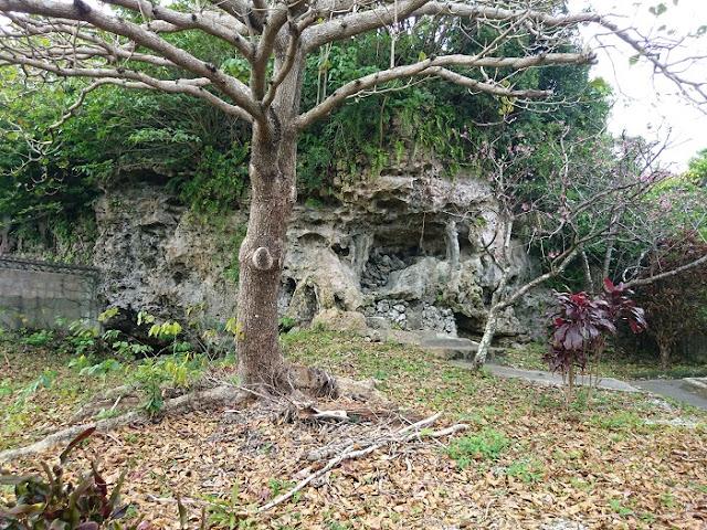 崖葬墓の写真
