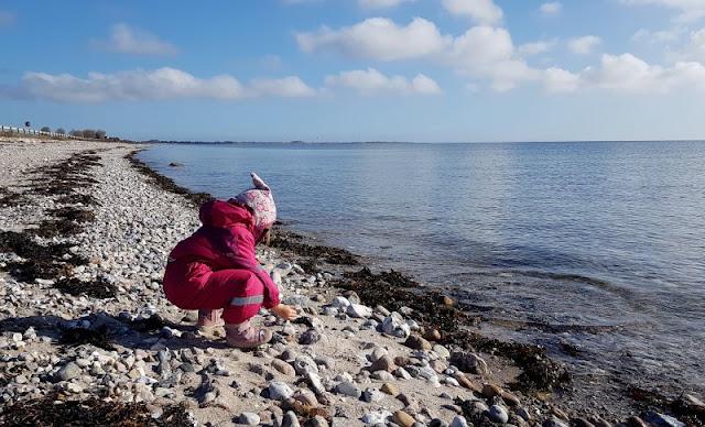 Ein Inselausflug nach Kegnæs. Unsere fanden den Strand an der Landzunge der Halbinsel toll.