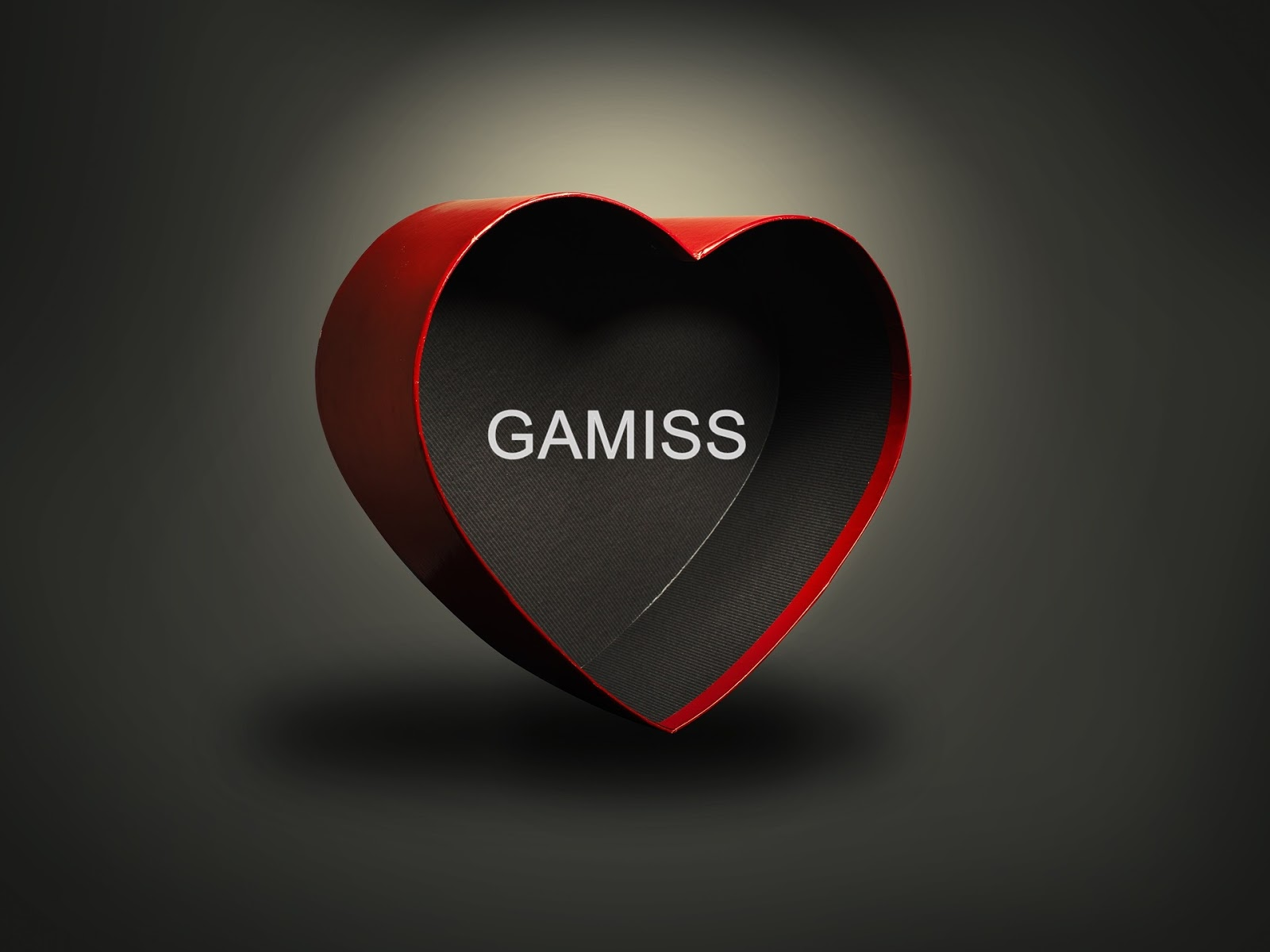GAMISS VALENTINES GIFTS 2018