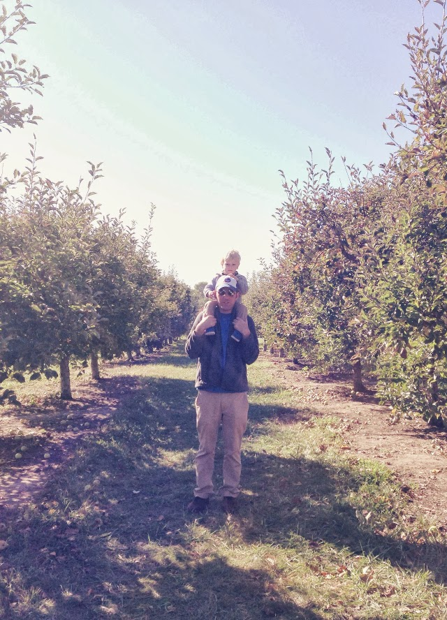 apple picking in kansas city