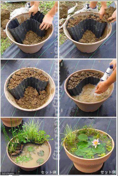 Natural Flower pool pot gardening idea