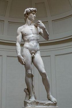 Michelangelo's David, 1501-1504