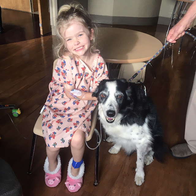 Daphne and Takoda, the therapy dog