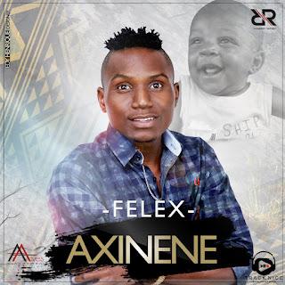 imagem FELEX - Axinene