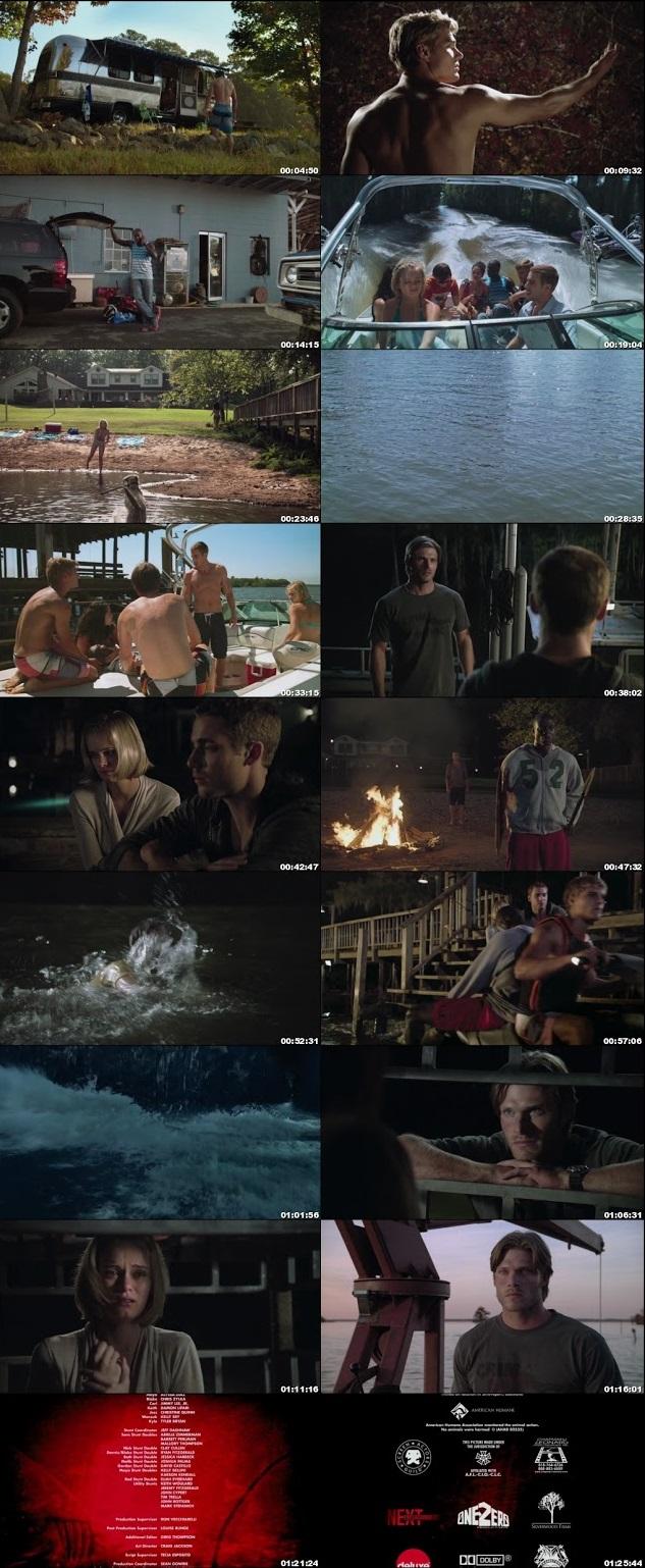 shark night 3d full movie in hindi free download 480p