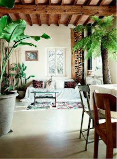 sala con plantas