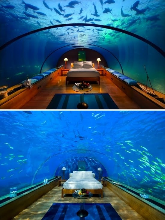 dreaming of palm trees underwater hotel. Black Bedroom Furniture Sets. Home Design Ideas