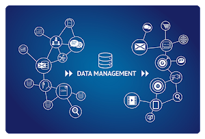 Things You Should Know About The Process of Data Management