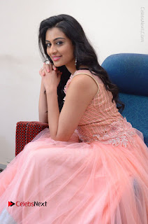 Actress Neha Hinge Stills in Pink Long Dress at Srivalli Teaser Launch  0093.JPG